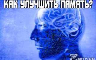 Как можно улучшить память взрослому человеку: эффективные способы