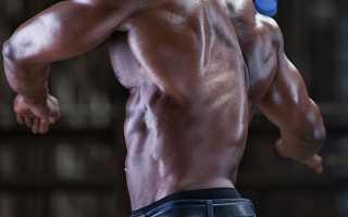 Лучшие упражнения на широчайшие мышцы спины