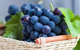 Какие витамины молодости и красоты содержатся в винограде?