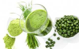 Все полезные свойства и противопоказания водоросли спирулины
