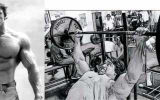 Базовые упражнения для грудных мышц для мужчин