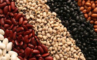 Нужны ли человеку бобы: польза продукта и возможный вред