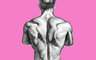 Самые эффективные упражнения на спину