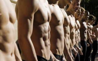 Комплекс упражнений на все группы мышц дома