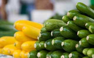 Отличаем кабачки от цукини: 3 верных способа