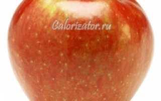 Всё о пользе и калорийности яблока: раскрываем свойства фрукта