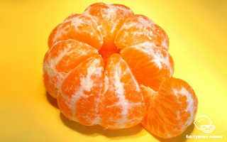 Польза и вред мандаринов для здоровья человека