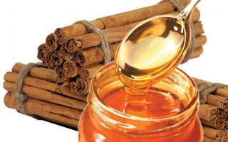 Корица с пчелиным мёдом – скорая помощь при разных заболеваниях