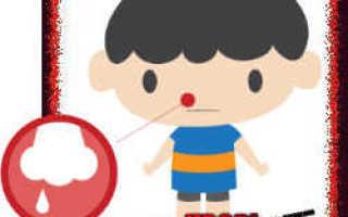 Лечение носовых кровотечений народными средствами