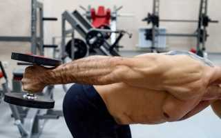 Лучшие упражнения для трицепса на массу