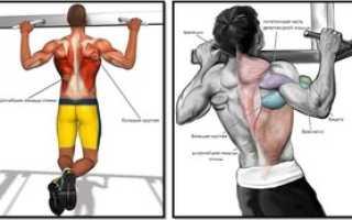 Как на качать мышцы на брусьях