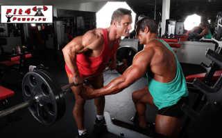 Упражнения длинные мышцы спины