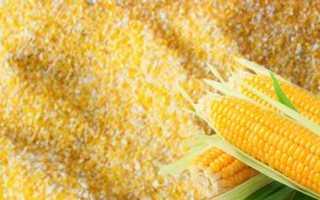 Чем полезна для организма кукурузная каша