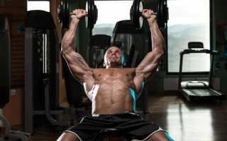 Самые эффективные упражнения на грудные мышцы