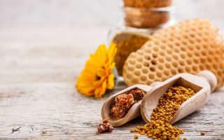 Полезные свойства и применение пчелиной перги