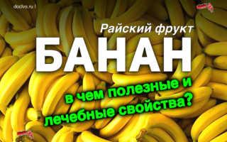 Райский фрукт: полезные свойства банана