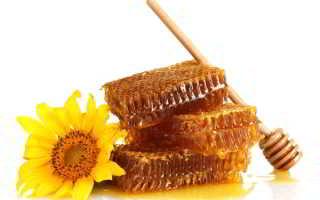 Как правильно выбрать мёд при покупке?