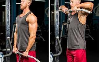 Бодибилдинг упражнения для плеч