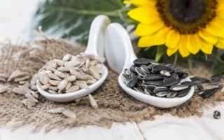 Cемена подсолнечника — вкусный источник полезных веществ