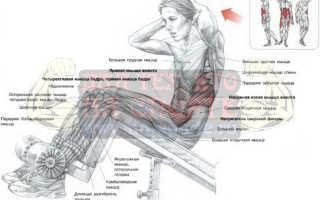 Простые упражнения на скамье для прокачки мышц пресса
