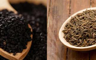 Польза и возможный вред от черного тмина