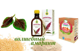 Полезные и вредные свойства растения амарант