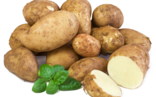 Сколько и как правильно варить молодую картошку
