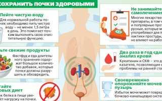 Почки. лечение народными средствами