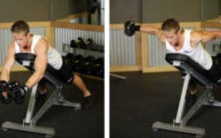 Гантели упражнения на плечи
