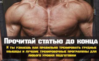Лучшие упражнения для груди