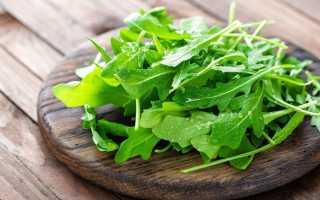 Наиболее полезные свойства салата руккола