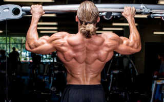 Какие упражнения надо делать чтобы научиться подтягиваться