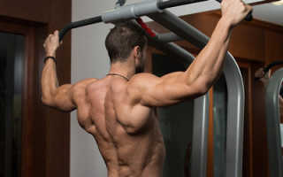 Базовые упражнения в тренажерном зале на спину
