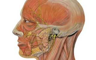 Минералотерапия при лечении невралгии и неврита