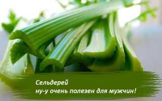 Бесценная польза сельдерея для мужчин