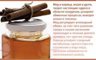 Натуральная корица с мёдом – основа для похудения