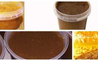 Полезные свойства мёда с пергой: как принимать продукт
